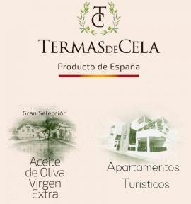 Termas de Cela (Apartamentos Turísticos)